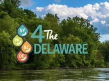 4 the Delaware Campaign